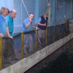 North Carolina Aquarium at Pine Knoll Shores Uses Dan-Inject Syring Pole On Sand Tiger Shark 2